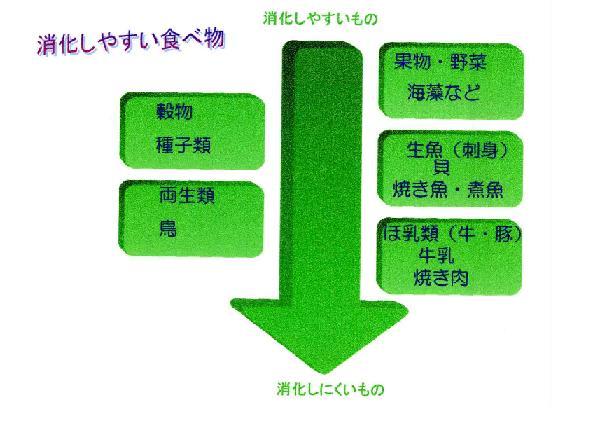 20080419114317.JPG