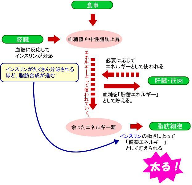 20080524003935.JPG