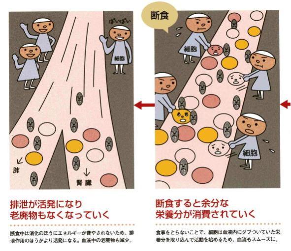 20080707092618.JPG